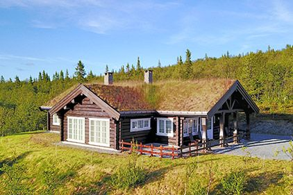 High-quality wooden squared log houses - log house with the grass on the roof