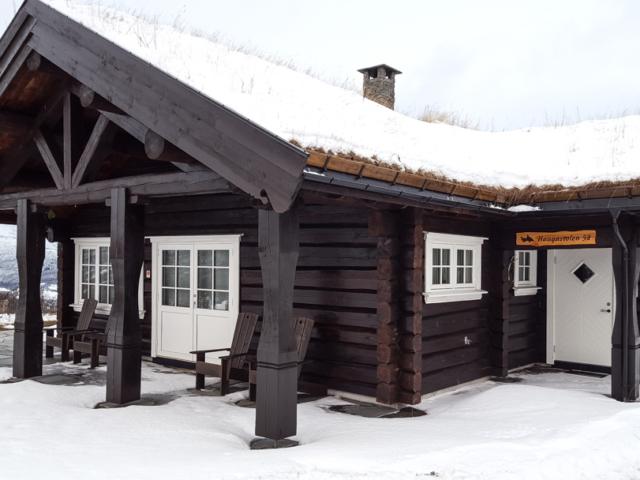 Käsitöö palkmaja Norras